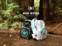 Muir Woods Vandalovers